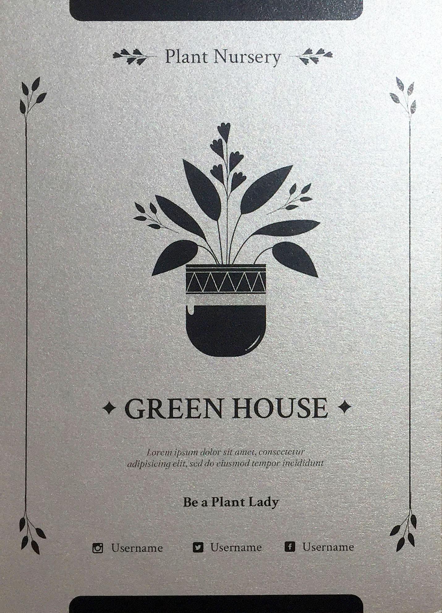 silver plant lady